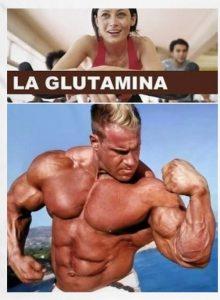 que es la glutamina
