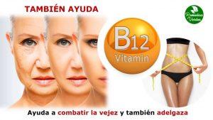 que es la vitamina b12