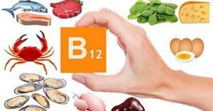 en que alimentos se encuentra la vitamina b12