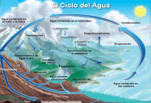 ciclos del agua